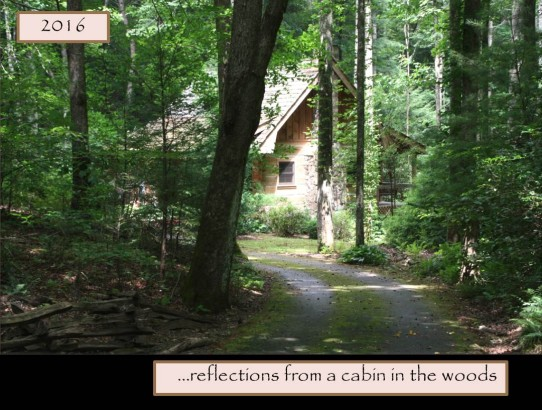 2016 Reflections From a Cabin in the Woods Calendar